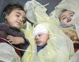 syuhada syria